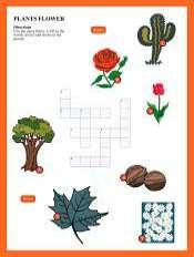 Plantas y Flores Crucigrama en Ingles