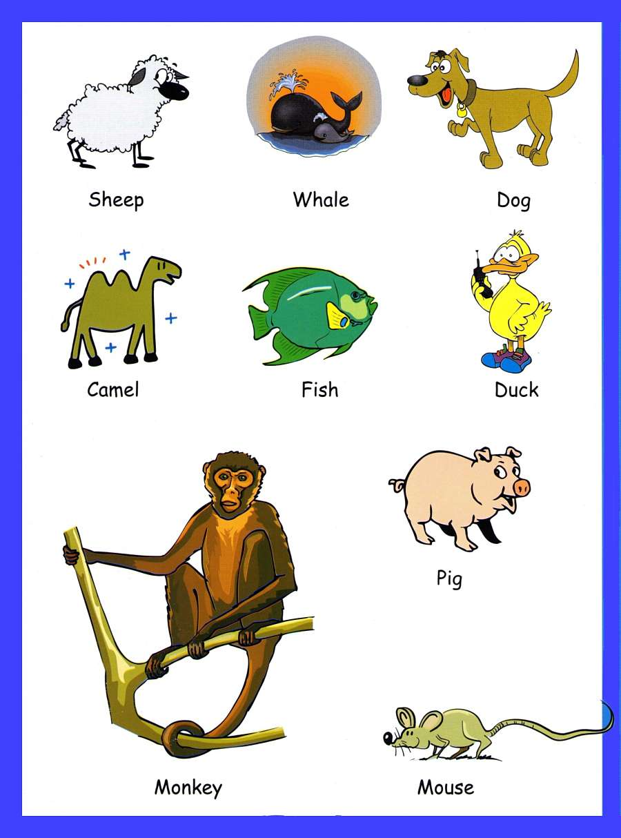 animals vocabulary for kids