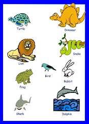 Fotos de animales en Ingles Para Niños