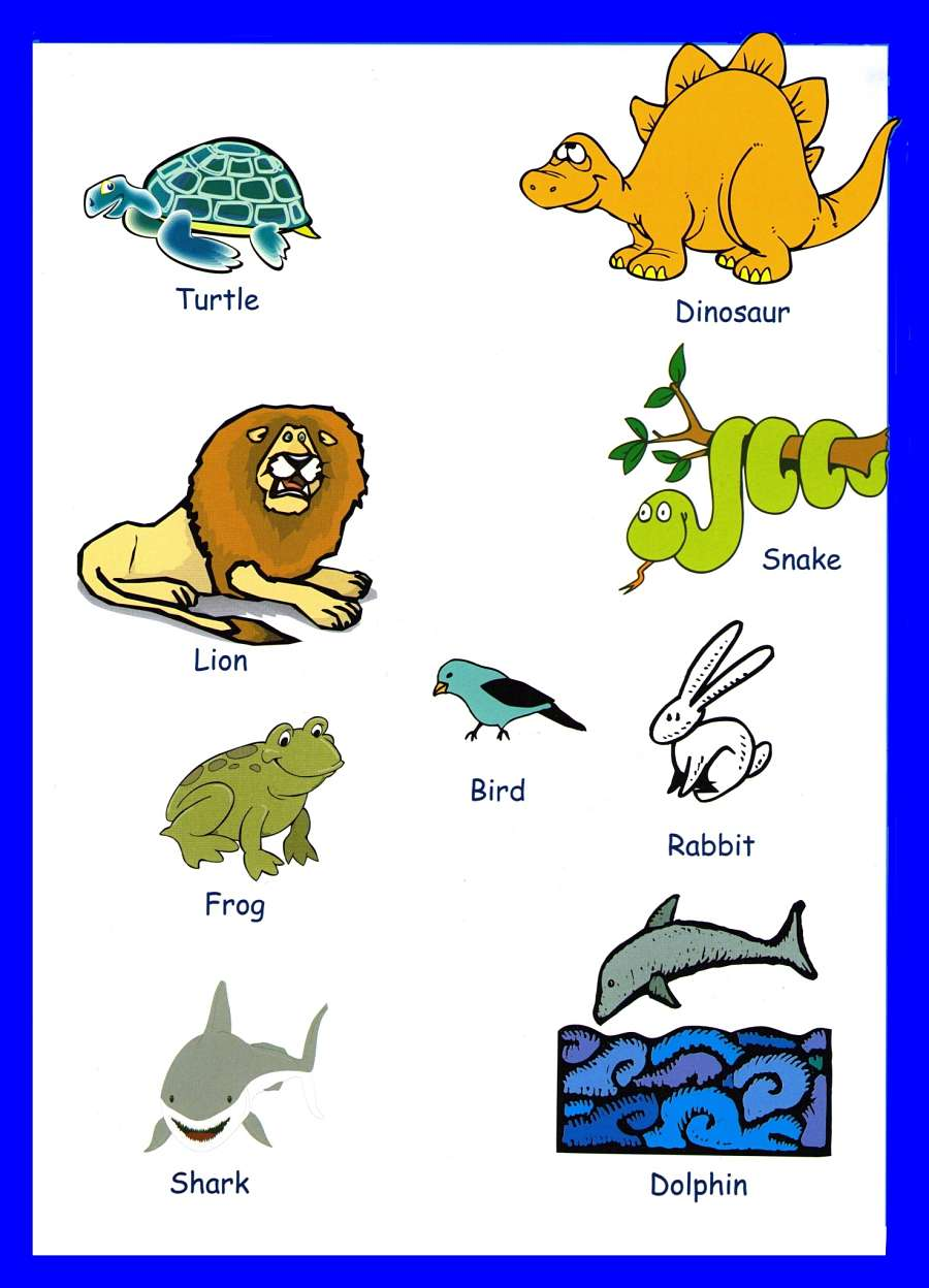 Animals Pictures For Kids Animals Vocabulary For Kids