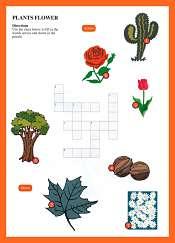 Mots Croisés-  Les Plantes les Fleurs en Anglais