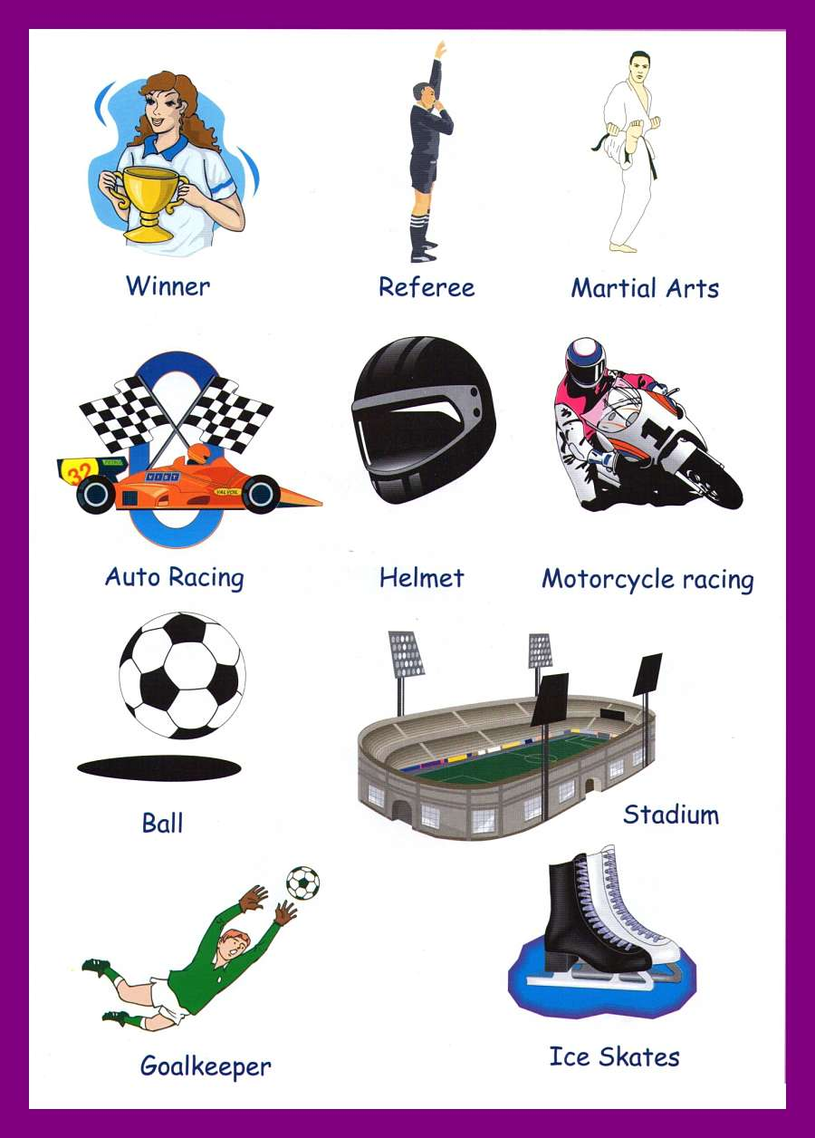 Sports Terms Vocabulary