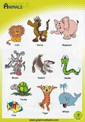 Animals Vocabulary 10